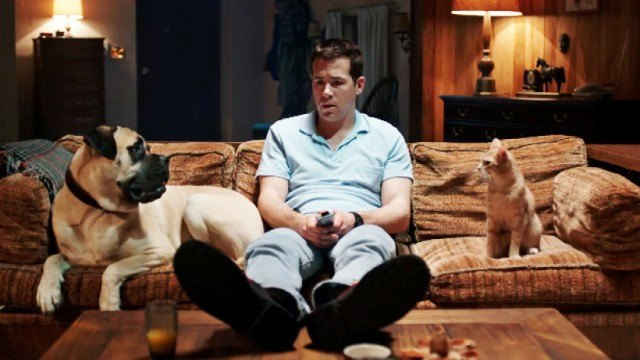 Ryan Reynolds on a couch with a dog and a cat.
