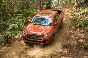 Toyota Tacoma: Why it's the Leader Among Midsize Pickup Trucks