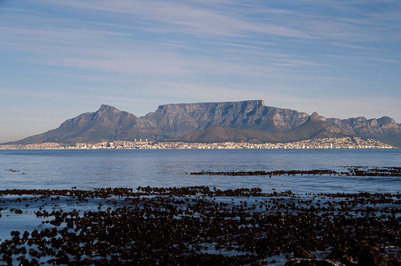 south africa vista