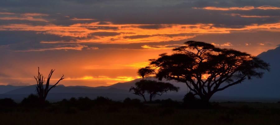 Kenya, sunset