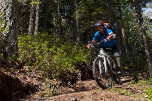 5 of the Best Mountain Bikes for Spring and Summer