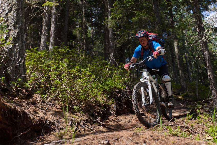 mountain bike, trail