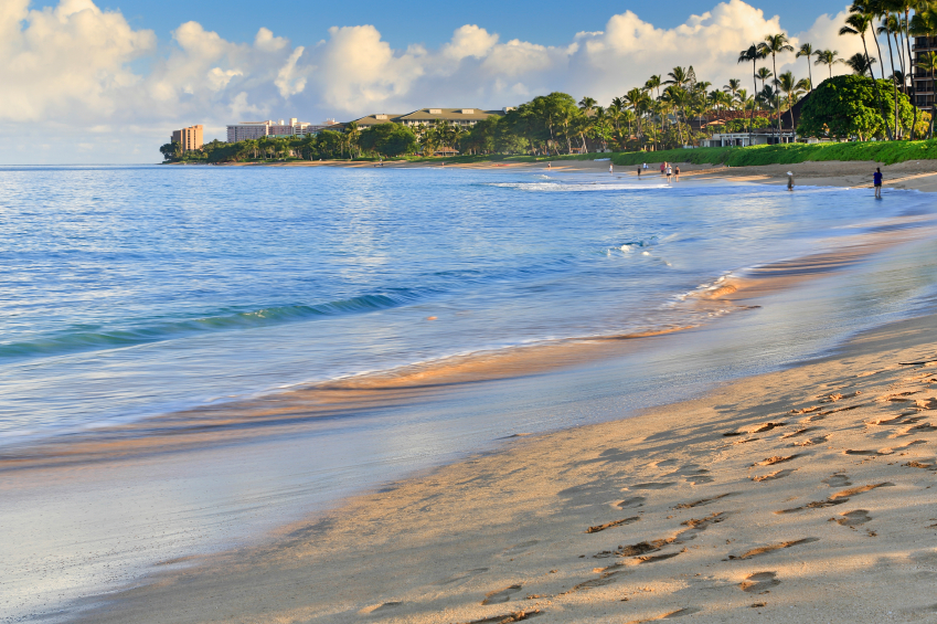 beatiful sandy beach in Maui, Hawaii