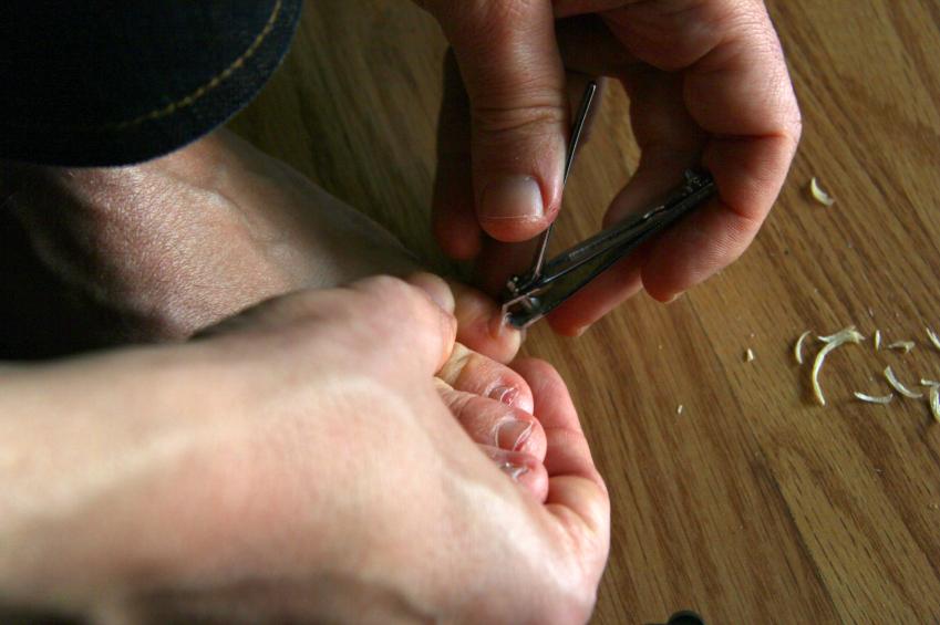 nail cutting, grooming
