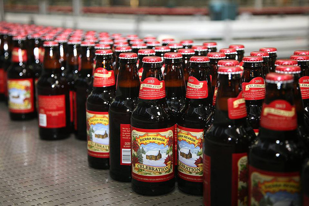 Bottles of beer lined up during production