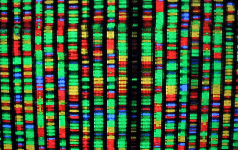 Genetic sequence