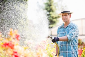 Do it Yourself:  5 Affordable Home Improvement Projects