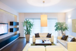 7 Easy Ways Guys Can Purify Their Homes