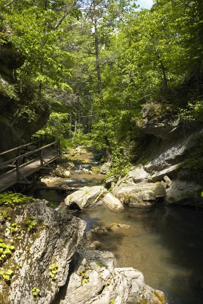 The Homestead- Cascade Gorge Hike 6