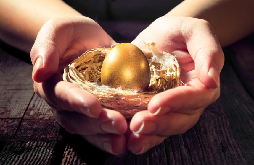golden egg in a nest