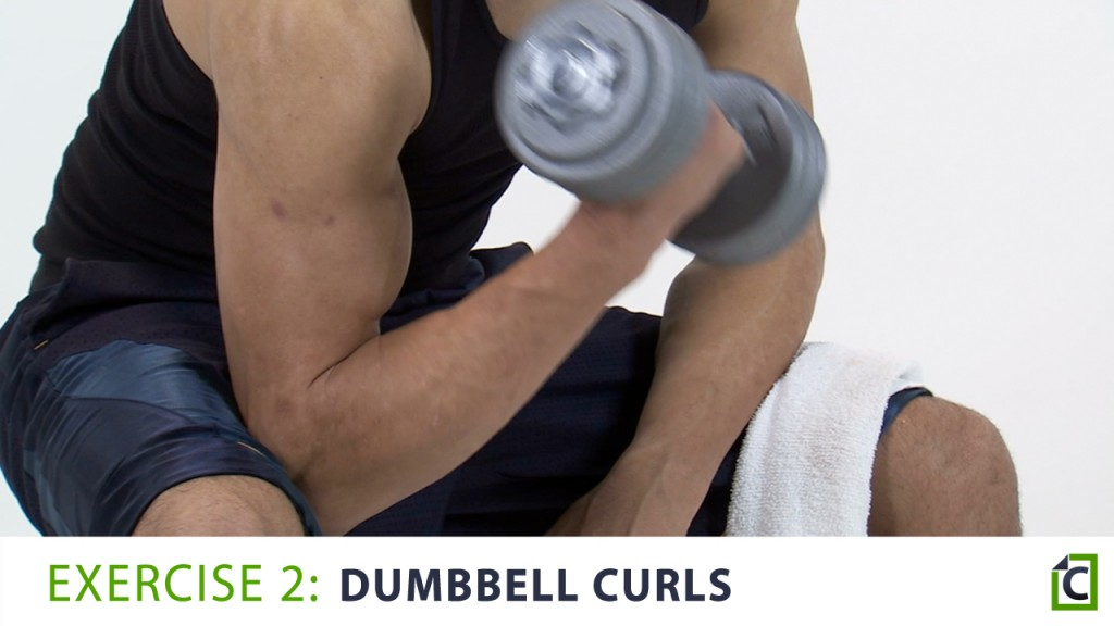 2. dumbbell curls