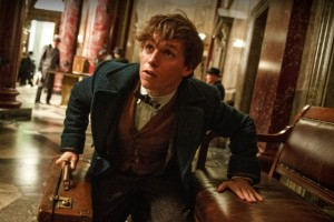 'Fantastic Beasts and Where to Find Them': Everything We Know So Far