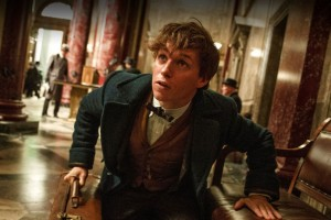 Harry Potter Fans Just Got Great News About 'Fantastic Beasts'