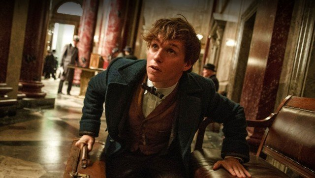 Newt Scamander between his suitcase and a bench.