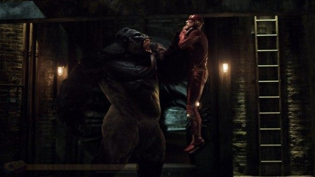 Gorilla Grodd - The Flash, CW