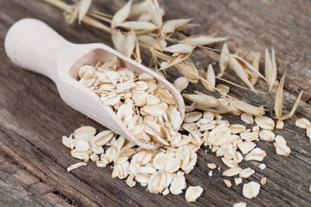 oats in a meausirng scoop