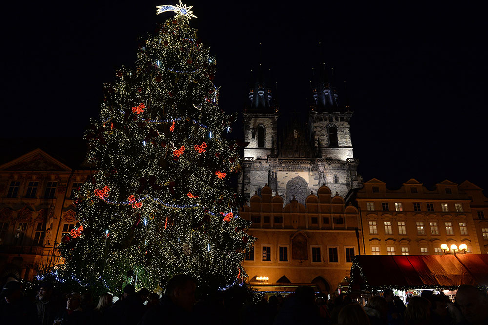 A Christmas tree in front of a Prague cathedral