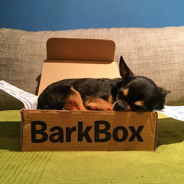 Source: BarkBox official Facebook page