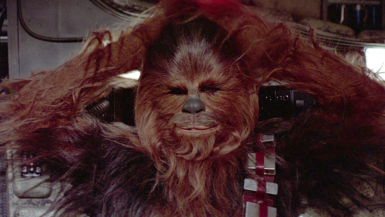 Chewbacca in Star Wars Episode VII The Force Awakens