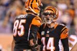 NFL: Preseason AFC North Predictions