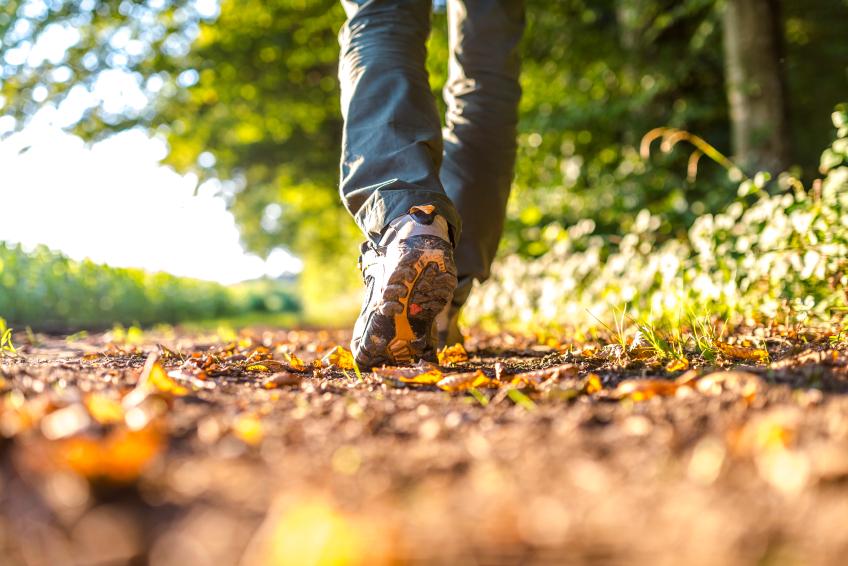 Hiking on a path