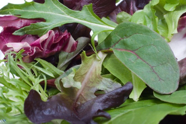 Salad greens from a bag | Source: iStock