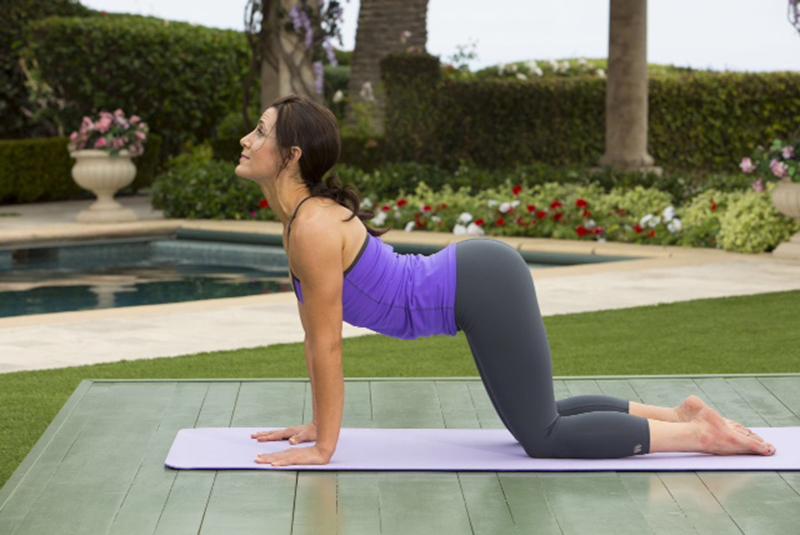 Alanna Zabel in cat pose, yoga