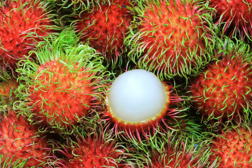 image of lots of Rambutans