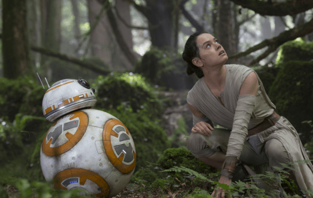 Rey looks upward while crouching by grass and trees.