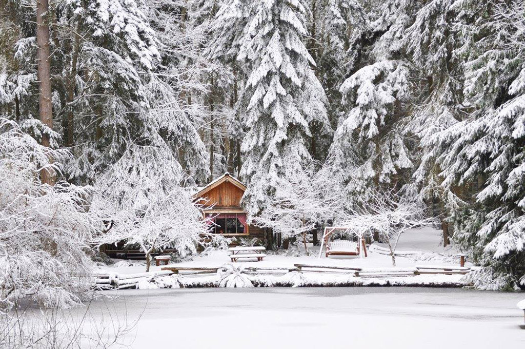 Snow-covered Guest House Log Cottages on Whidbey Island, Washington