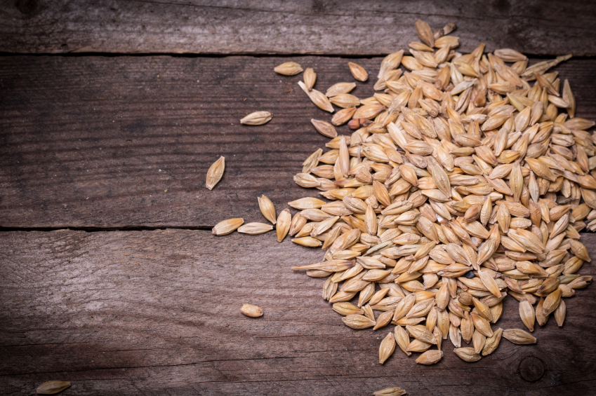 Barley on wooden table