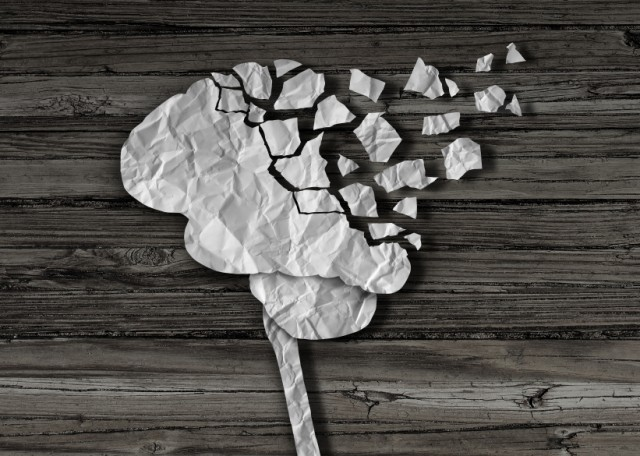 a puzzle of a brain