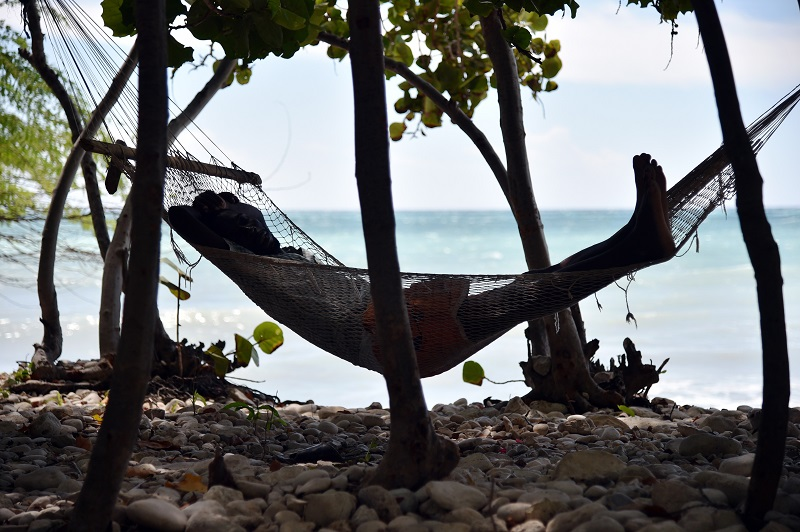 A man sleeps in a hammock close to the beach in the commune of is Anse-a-Pitres, in the South East Department of Haiti, on October 14, 2015