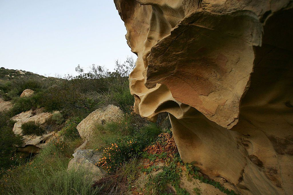 Unusually-shaped sandstone formations stand out in the landscape of Laguna Coast Wilderness Park
