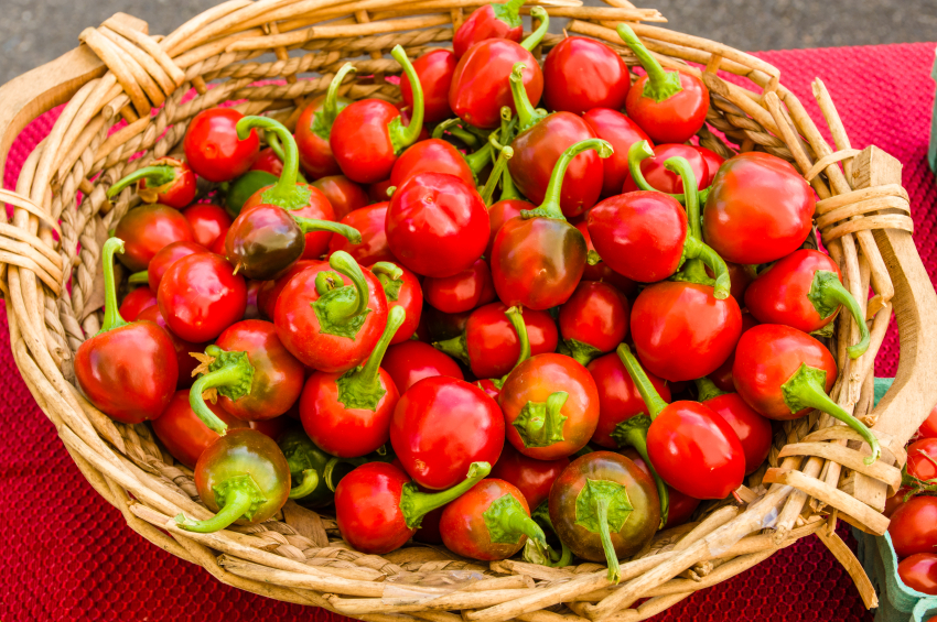 baset filled with fresh hot cherry peppers