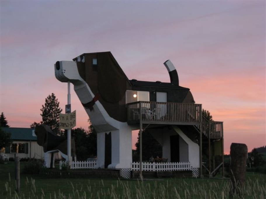 house shaped like a dog