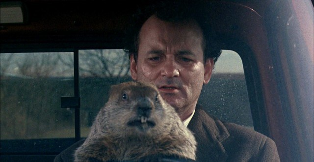 Bill Murray and a groundhog in 'Groundhog Day'