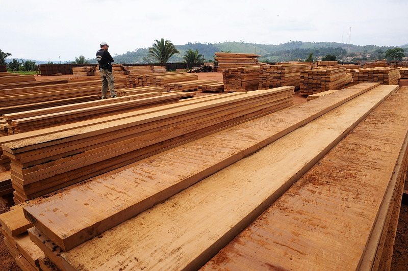 Planks at a sawmill