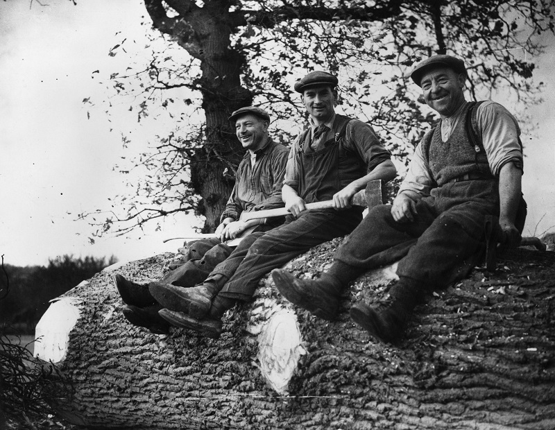 Lumberjacks, lumbermen, and loggers