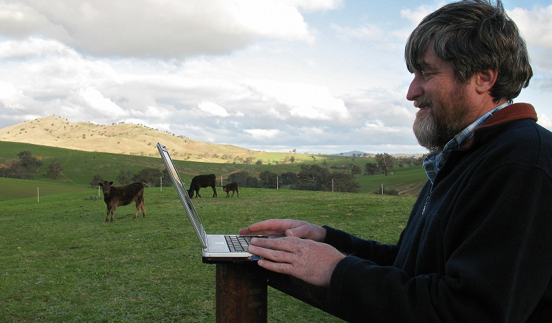 Man works remotely in a field