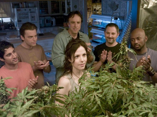 Mary-Louise Parker as Nancy Botwin and five men in a greenhouse looking at a marijuana plant on Weeds