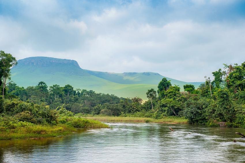 a river in the jungle, Democratic Republic of the Congo
