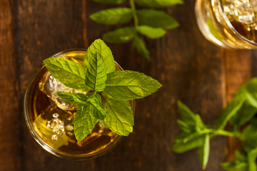 Gourmet Mint Julep on a wooden background