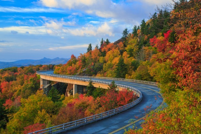 trees show fall colors on the Blue Ridge Parkway in the mountains