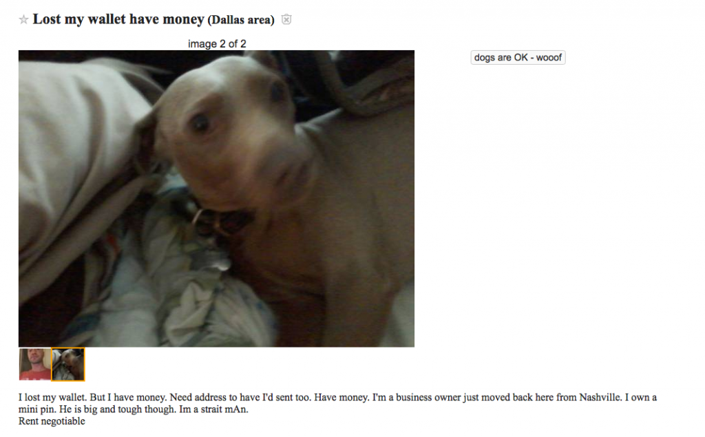 Craigslist post with picture of dog