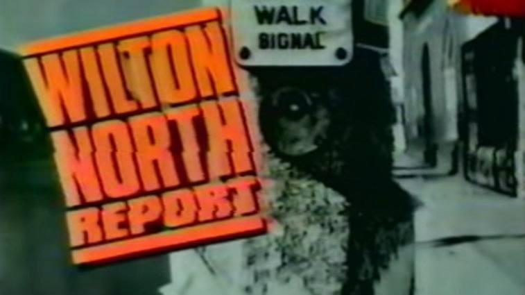 Wilton North Report