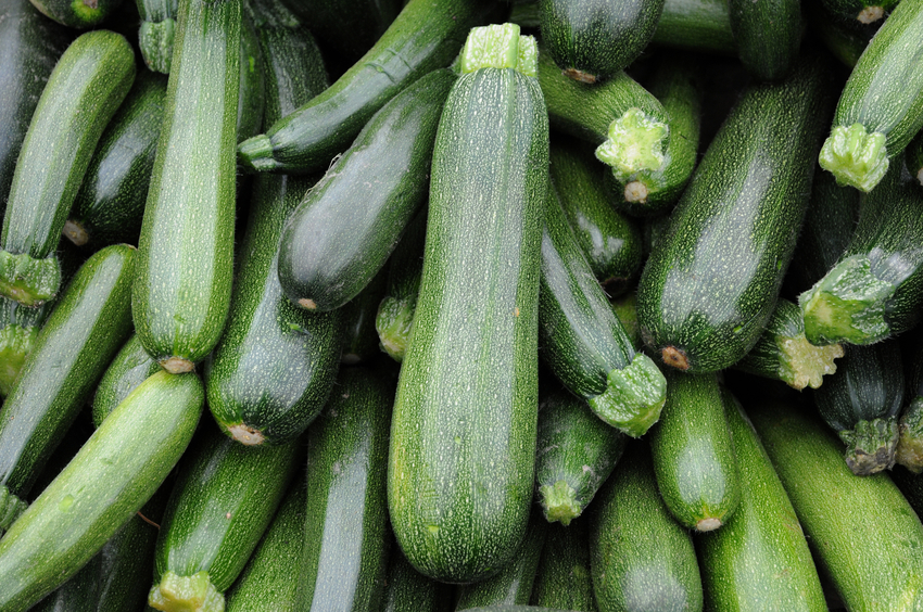 pile of zucchinis