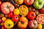 12 Best Ways to Use Garden Fresh Tomatoes