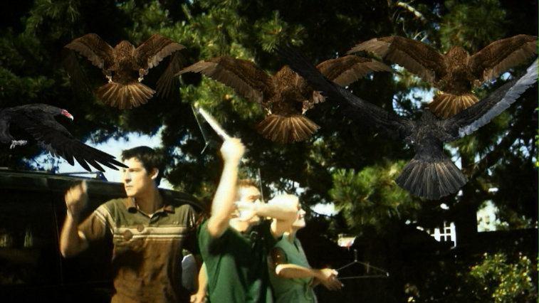 Three boys fight off birds with coat hangars