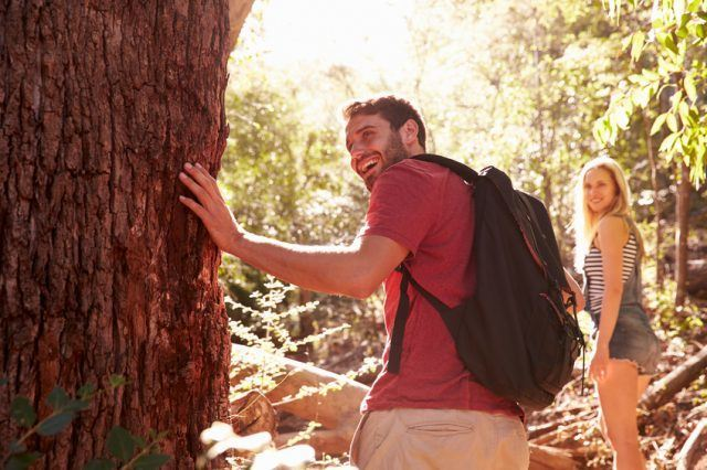 A happy couple looking at a tree trunk